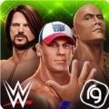 WWE混乱