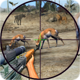 Wild Animal Shooting