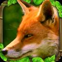 狐狸模拟世界破解版